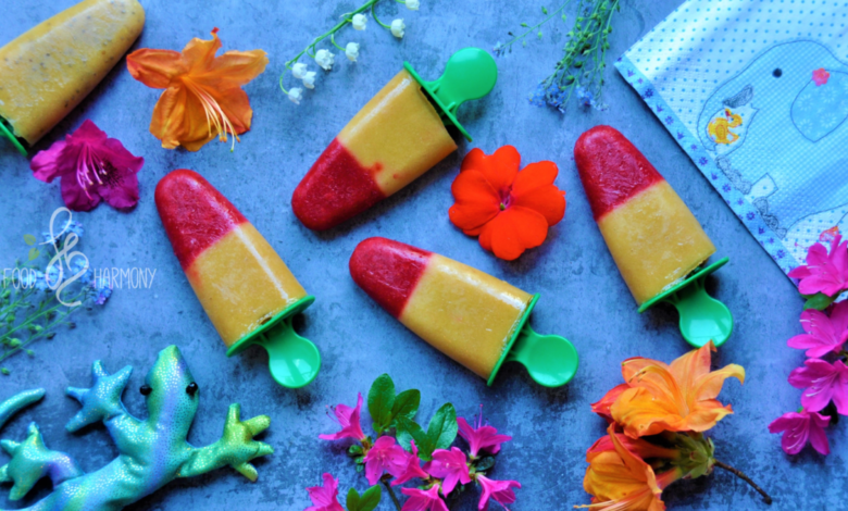 Photo of Domowe lody owocowe